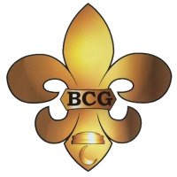 BCG Management LLC